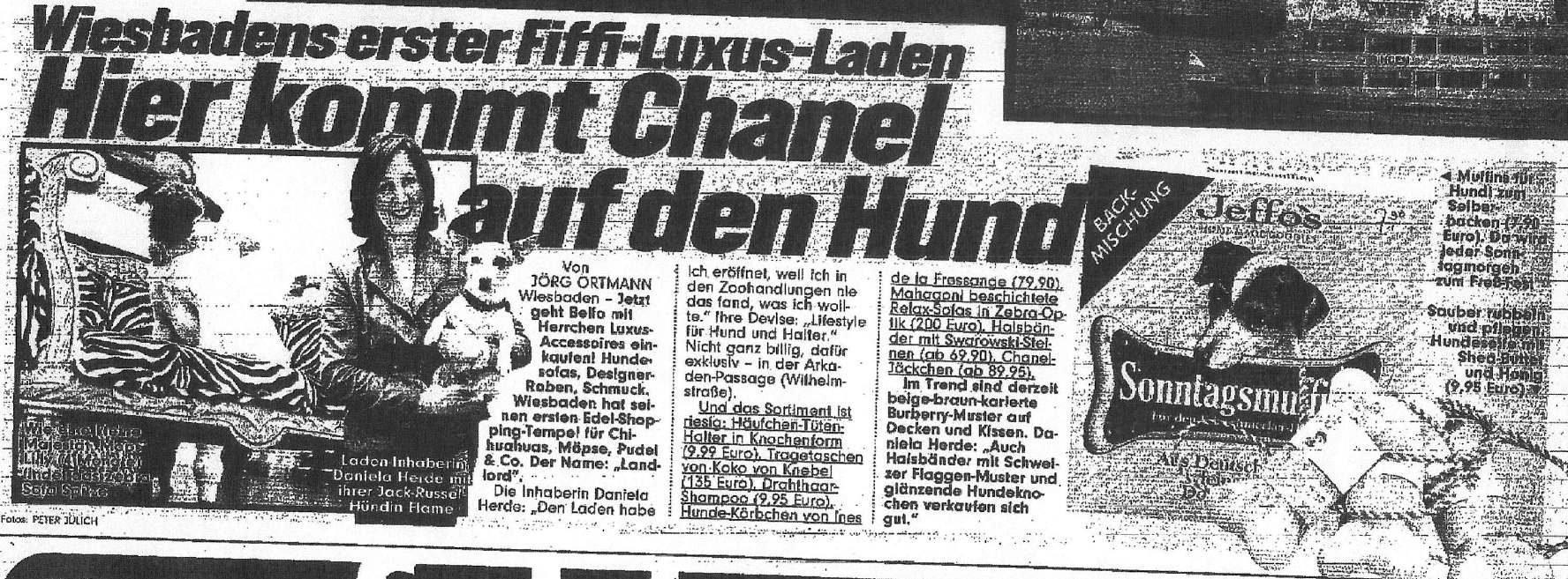 Presseschau Bild 6-2006