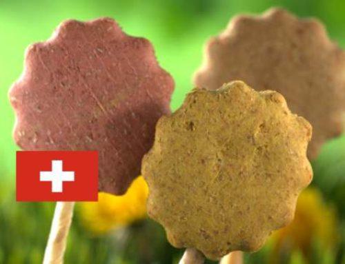 Jeffo erweitert Vertriebsnetz in die Schweiz