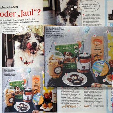 Geschackstest für Hundeleckerlis